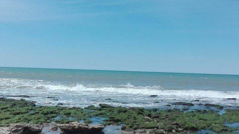 Cómo impulsar la industria TIC desde el mar- General Alvarado