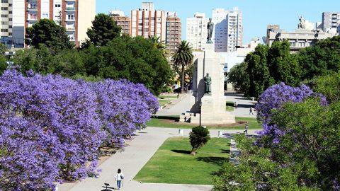 Gobierno abierto- Bahía Blanca